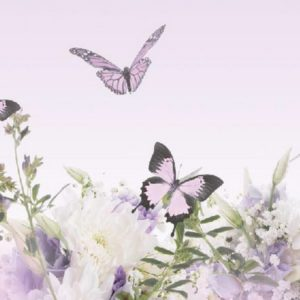 Бабочки в саду