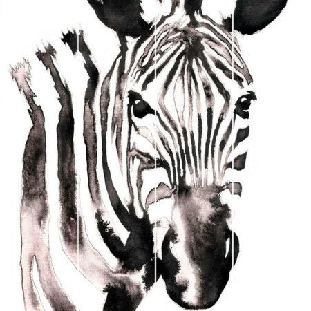 Kartini na doskax golova zebra