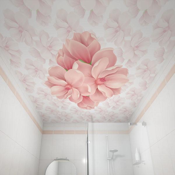 small_magnolia
